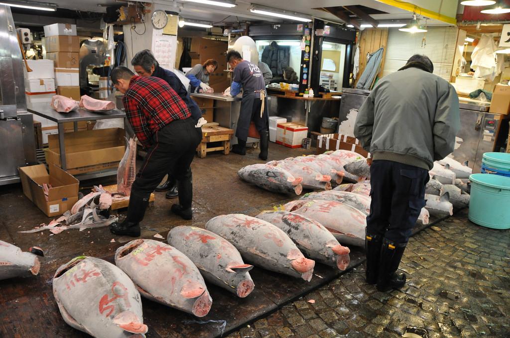 Tsukiji-Market