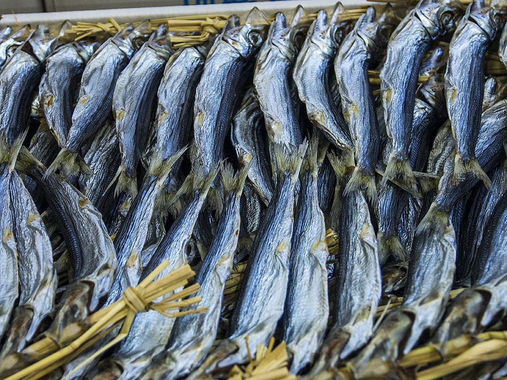 Osaka Fish Market