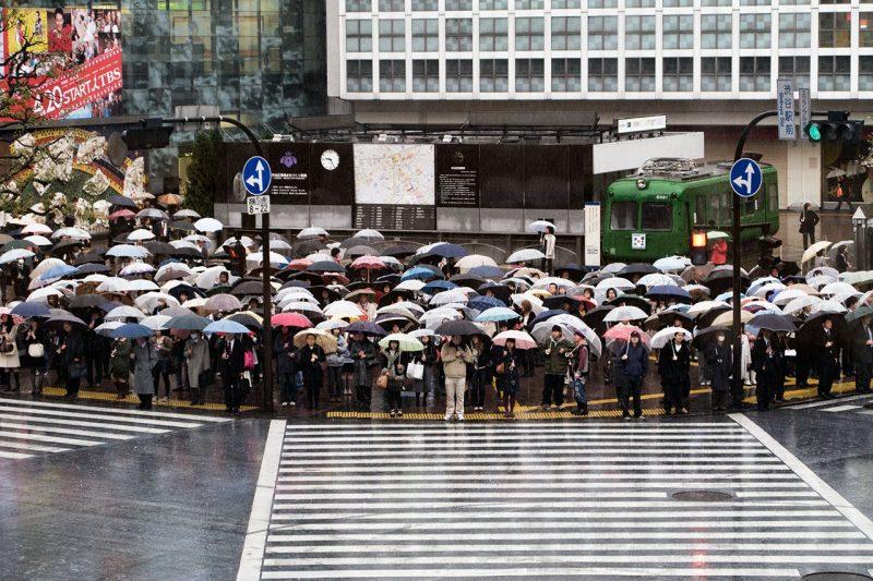 Umbrella Scramble