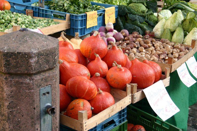 Culinary Uses of Hokkaido Pumpkin