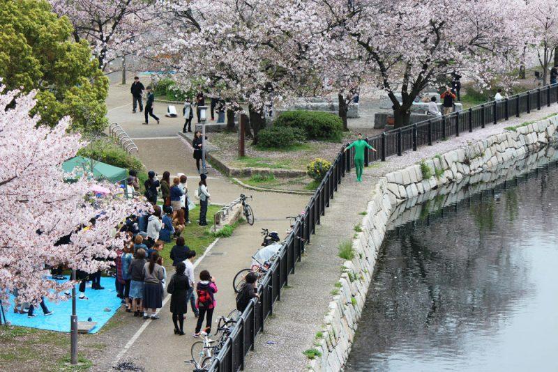 Nishinomaru Garden
