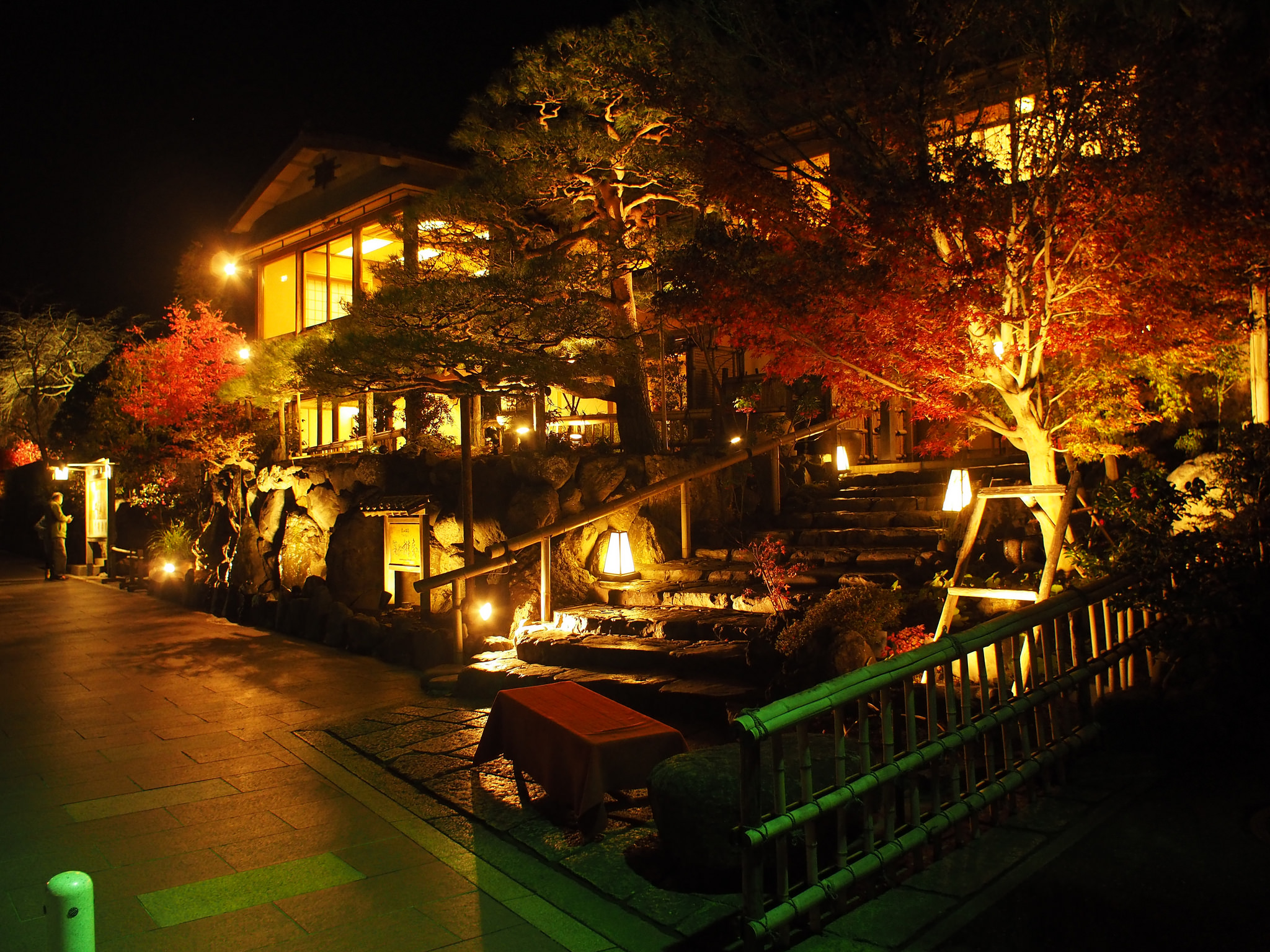 Night in Kyoto