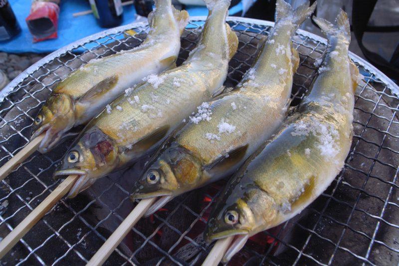 Kawaghuchiko Ayu Sweetfish