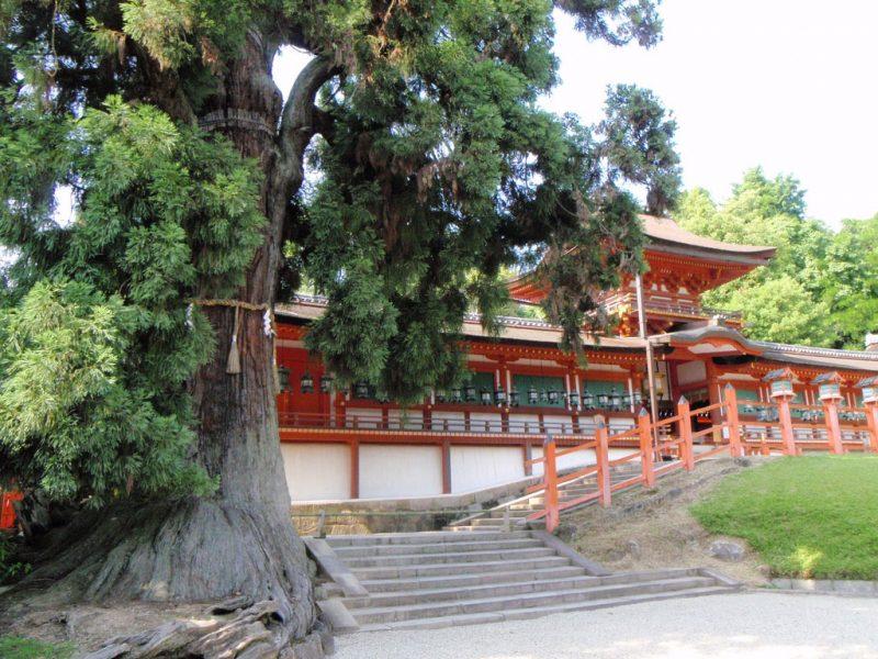 Kasuga Taisha Treasure House
