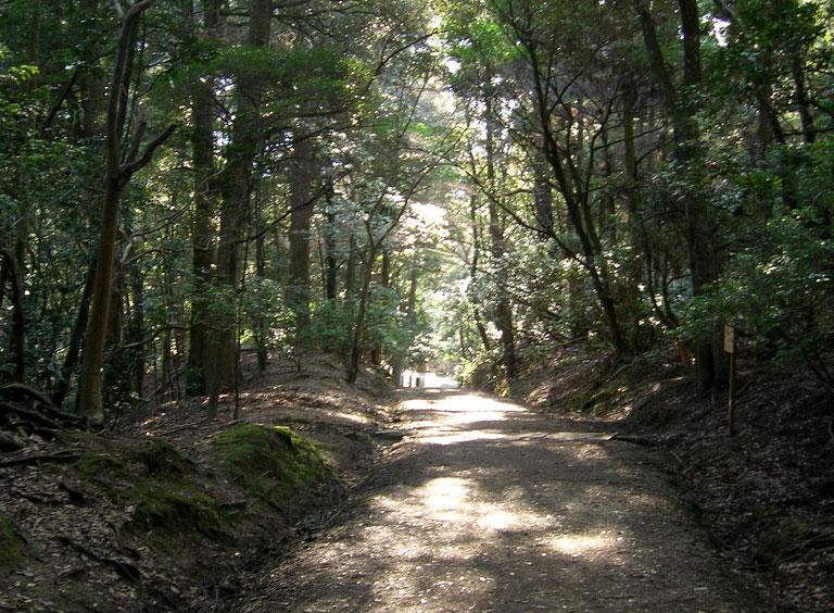 Kasugayama Primeval Forest
