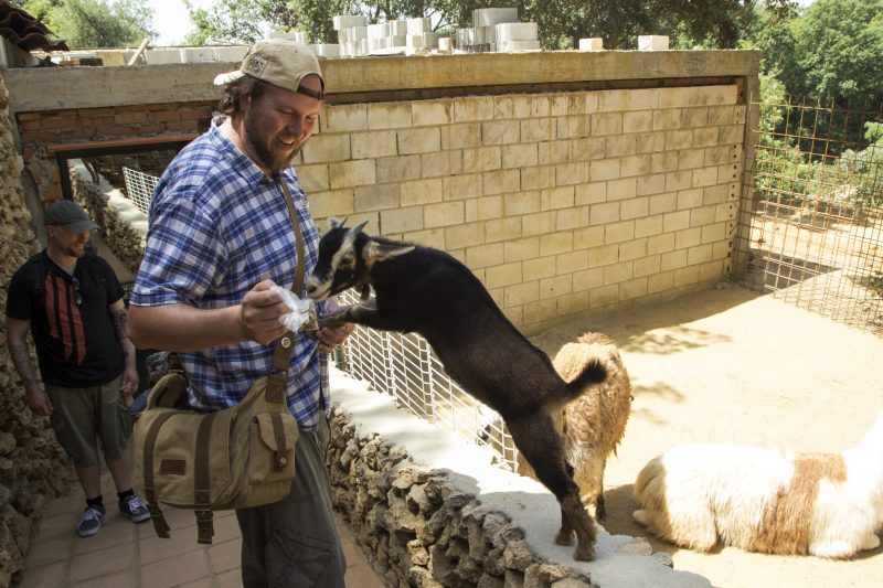 zoo castellar