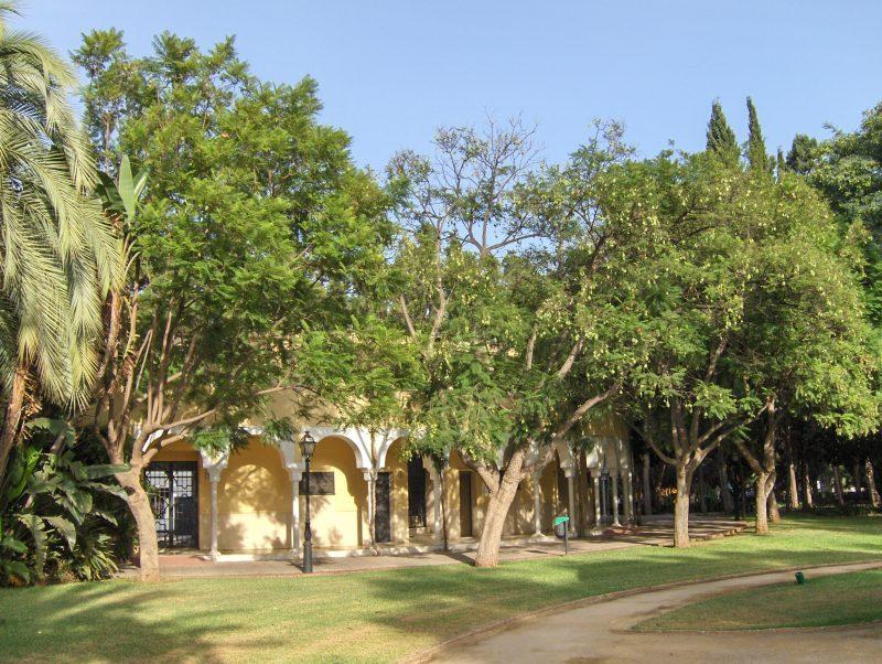 Auditorio_Parque_de_la_Constitución