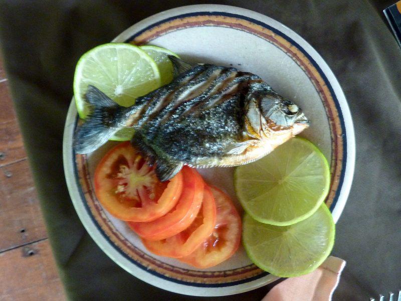grilled piranha