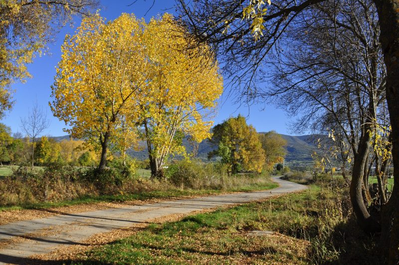 Spain Autumn