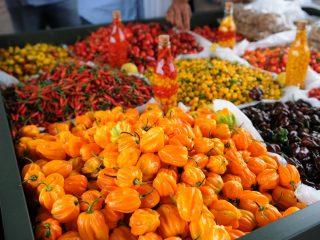 Brazilia Foods