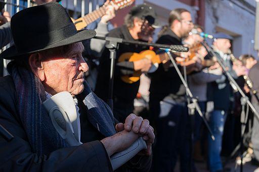 Fiesta Musician1