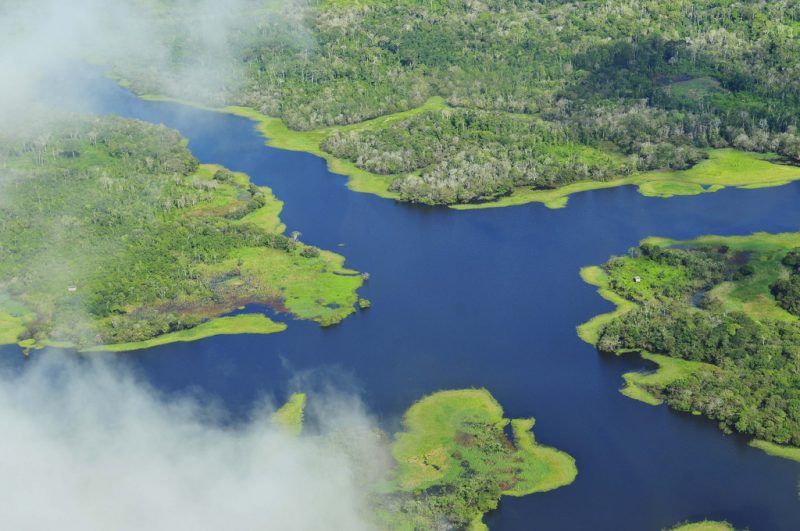 Amazonian Panorama