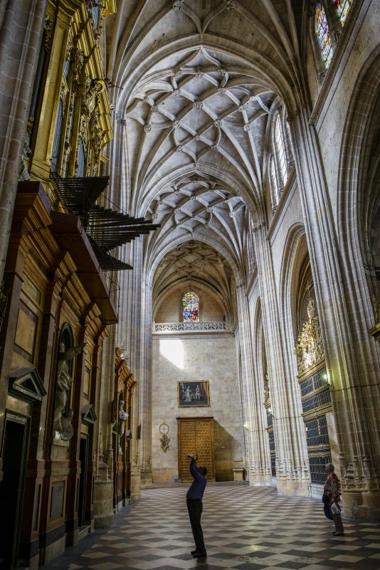 10 Things To Know About Segovia Cathedral Trip N Travel